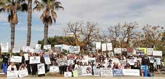 Seaworld protest 1-19-14
