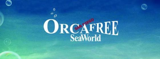 SeaWorld Orca free