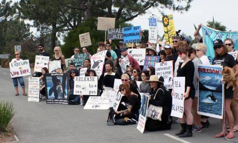 SeaWorld protest 4-20-14 02