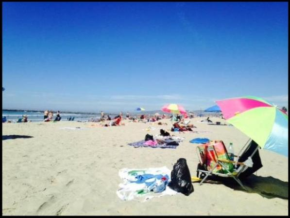 OB beach 10-4-14 jonc 02