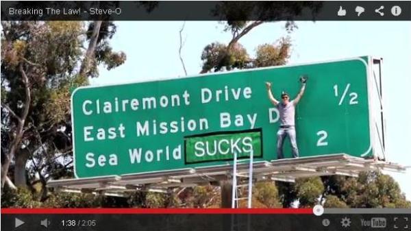 SeaWorld Sucks ad