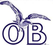 OB seagull decal orig