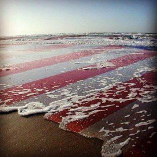 oceanshore w flag