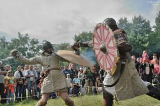 Bitva Rogar 2014 - Boj o Hedeby