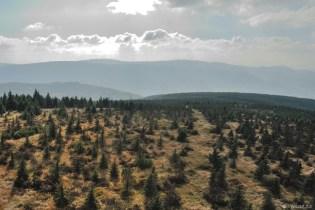 Jizerské hory - výhled ze Smrku