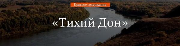 «Тихий Дон» очень краткое содержание романа Шолохова
