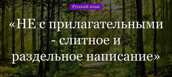 Как пишется НЕ с прилагательными: слитно и раздельно ...
