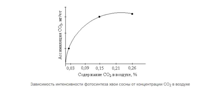 как зависит интенсивность фотосинтеза от освещения коммерческое