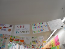 escolaseat-14