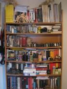 biblioteca-casa1IMG_0766 (1)