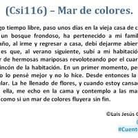 •(Csi116) – Mar de colores.