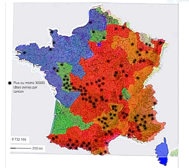 Les quatre phases de dispersion du loup en France | Observatoire Du Loup