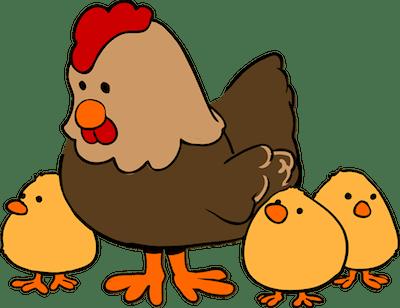 chicken-159496_960_720