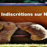 Indiscrétions sur Nicolas S.