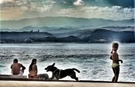 Familia con perro, noviembre de 2009 / LUIS ROCA ARENCIBIA