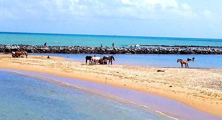 Praia do Carmo