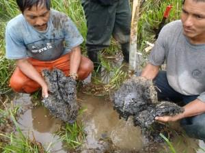 Foto de la zona de Bartra, una de las zonas petroleras más contaminadas.