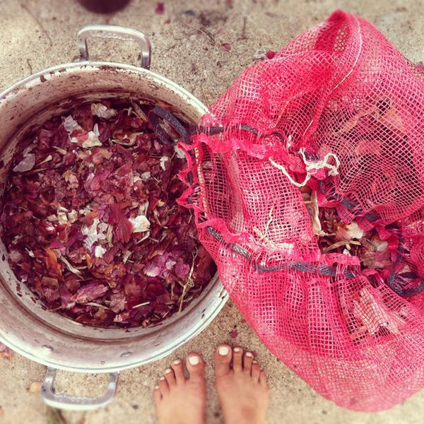 ONIONS-PLANT-BASED-NATURAL-DYE