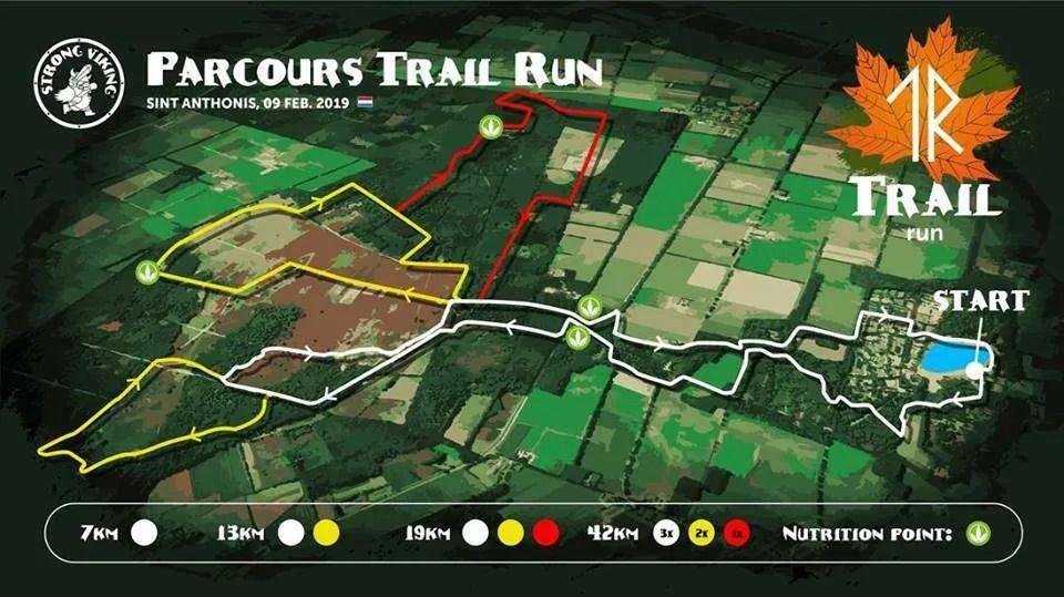 strong viking trail run parcours
