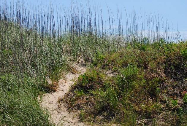 isabella-beach-access2