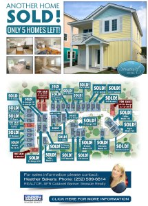 obx homes for sale new