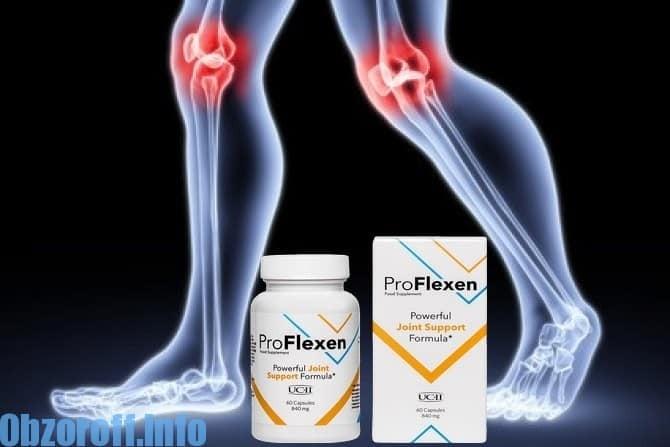 ProFlexen România
