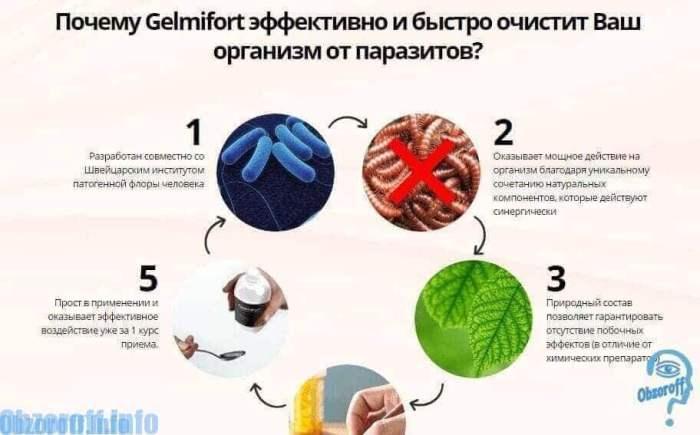 Свойства гельмифорт для очистки организма от паразитов