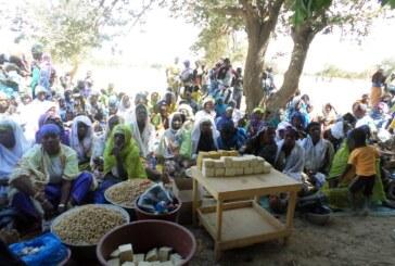 Projet KOM SAYA : Pour le renforcement de la résilience des ménages dans le domaine de la sécurité alimentaire de 10 villages des Diocèses de Dori, Kaya et Ouahigouya