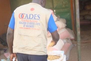 GTCIS : Comment Caritas compte  promouvoir  la résilience au Sahel