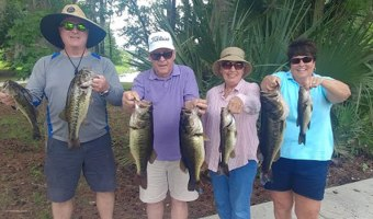 Excellent Florida Bass Fishing