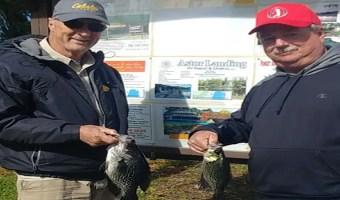 North Florida Pan Fishing