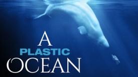 Risultati immagini per plastic ocean