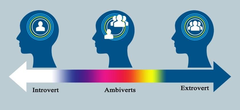 Introvert Continuum