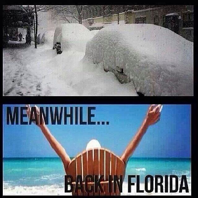 back-in-florida