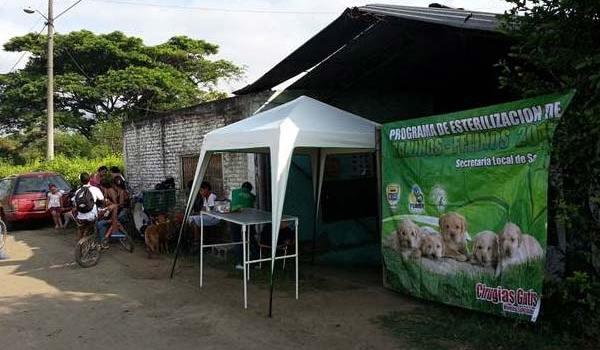 esterilizacion-de-perros-y-gatos-en-riveras-de-piles-ago-26