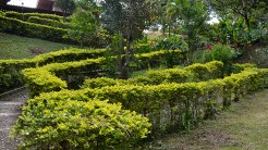 Parque de las Heliconias