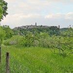 Деревня Пюисельси и лес Грезинь