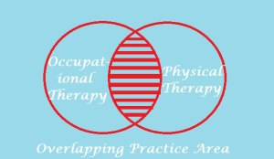 %difference between occupational and physical therapy