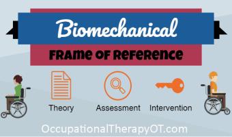 biomechanical frame of reference