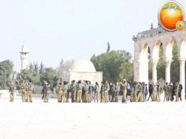 Jan 29 2013 Female Israeli Soldiers March through Aqsa Compound - Photo by QudsMedia 18