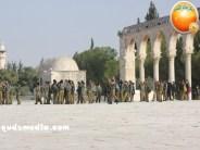 Jan 29 2013 Female Israeli Soldiers March through Aqsa Compound - Photo by QudsMedia 23