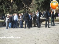 Febr 7 2013 Settlers and armed forces desecrate al-Aqsa Mosque - Photo by QudsMedia 30