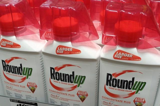 Przeciwko Bayerowi, do którego obecnie należy najpopularniejszy środek bazujący na glifosacie czyli Roundup, wytoczono 13,4 tys. postępowań o odszkodowanie za nabawienie się raka.