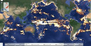 Global fishing watch map.