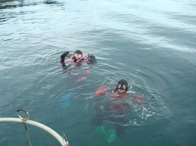 Divers help the underwater deployment of the mesocosms