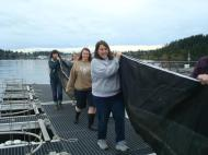 Kiely, Daneil, Natsuko, and Jen help put the mesocosms in the water