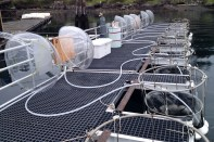 The mesocosms filling with filtered sea water