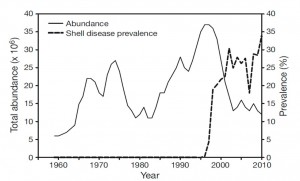 Figure 1: Total abundance vs. ESD prevalence in southern New England (by sea sampling survey done by Rhode Island Department of Environmental Management)