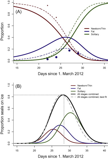Figure 2. (A) Observed proportions and estimates of the probability of a hooded seal pup being classified as belonging to the various stages, and (B) predicted proportion of hooded seal pups on ice as a function of time.  The dotted vertical line shows the proportion of pups visible on ice on 28 March when the photographic survey was carried out.  Dashed lines denote the improved model fits by tuning of duration of stages.