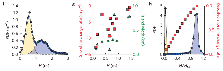 Figure 3.   f. The distribution of Virginia barrier islands height, showing a low height and high height peak.  g. The correlation of barrier island height to the rate of shoreline retreat, as indicated by the red squares.  Green triangles represent barrier island width.  h. Resulting modeling simulations show the distribution of barrier heights, with a low height and high height peak.  Red squares represent the shoreline rate of retreat as a function of height.